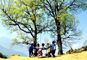 Hmong kids in Y Ty (Lao Cai) play with a swing.  Children in Thanh Hoa play Bermuda grass fighting in the field. Kids in