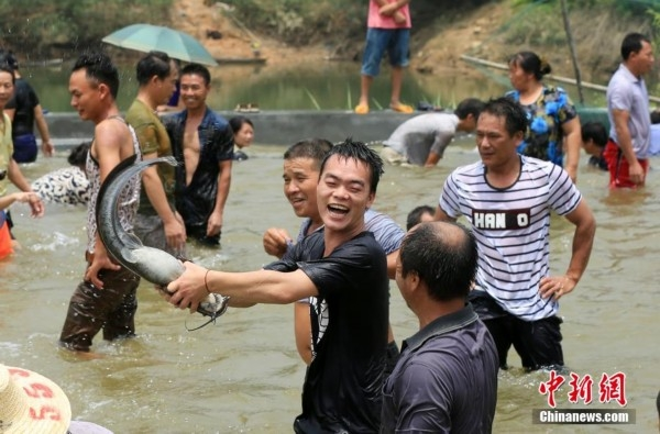 Hmong Fish Fighting Festival