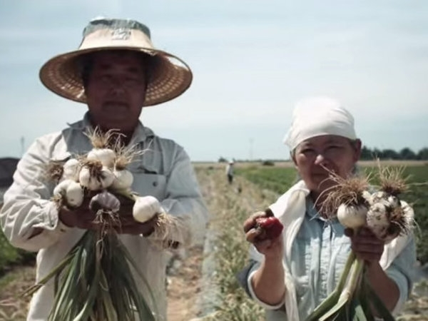 How California's Hmong Farmers Are Surviving The Drought