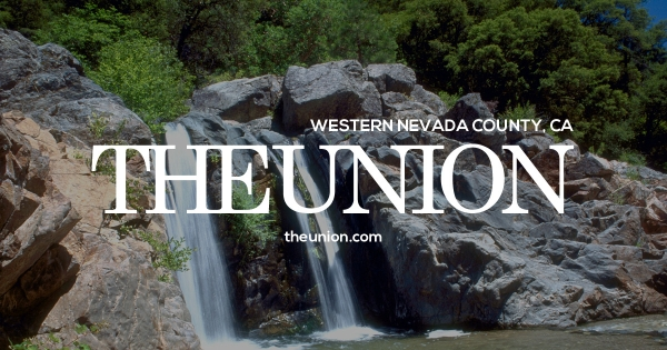 Seven Hmong pot growers were arraigned in Nevada County Superior Court Thursday and, with the help of an interpreter, en